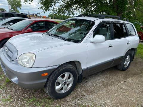 2006 Hyundai Santa Fe for sale at Car Solutions llc in Augusta KS