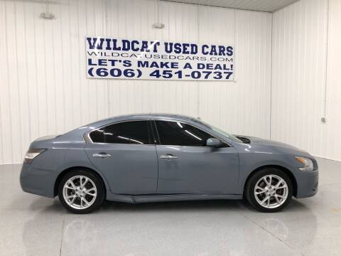 2012 Nissan Maxima for sale at Wildcat Used Cars in Somerset KY