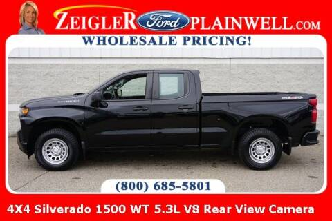 2019 Chevrolet Silverado 1500 for sale at Zeigler Ford of Plainwell- Jeff Bishop in Plainwell MI