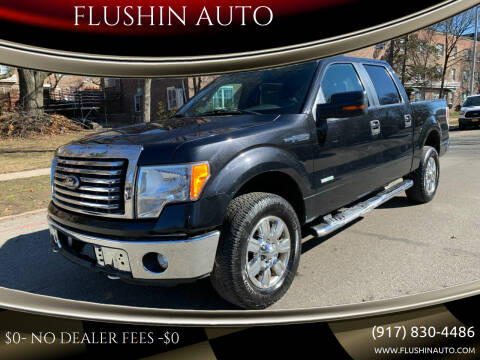 2011 Ford F-150 for sale at FLUSHIN AUTO in Flushing NY