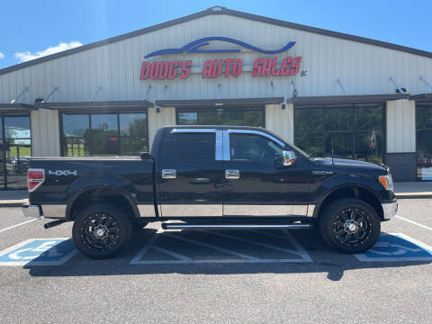 2010 Ford F-150 for sale at DOUG'S AUTO SALES INC in Pleasant View TN