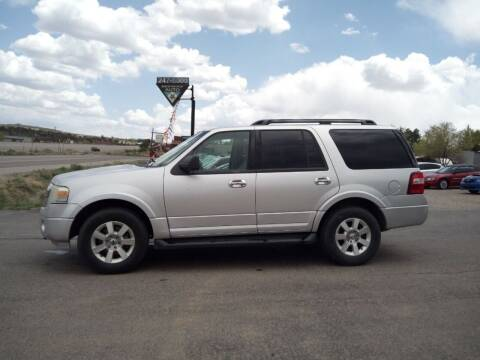 2010 Ford Expedition for sale at Skyway Auto INC in Durango CO