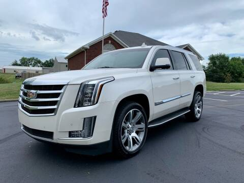 2015 Cadillac Escalade for sale at HillView Motors in Shepherdsville KY