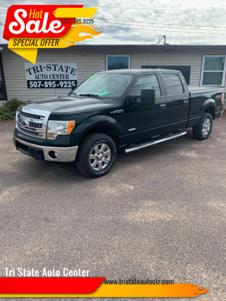 2014 Ford F-150 for sale at Tri State Auto Center in La Crescent MN