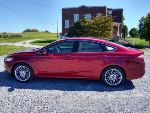 2014 Ford Fusion for sale at Dealz on Wheelz in Ewing KY