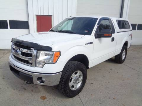 2013 Ford F-150 for sale at Lewin Yount Auto Sales in Winchester VA