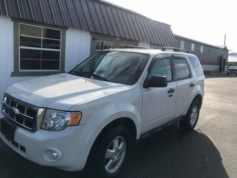 2010 Ford Escape for sale at Cannon Falls Auto Sales in Cannon Falls MN