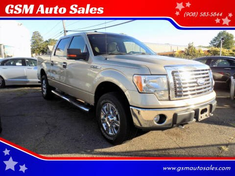 2010 Ford F-150 for sale at GSM Auto Sales in Linden NJ