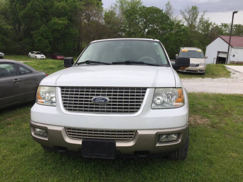 2003 Ford Expedition for sale at R.E.D. Auto Sales LLC in Joplin MO