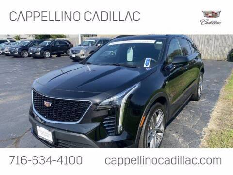 2019 Cadillac XT4 for sale at Cappellino Cadillac in Williamsville NY