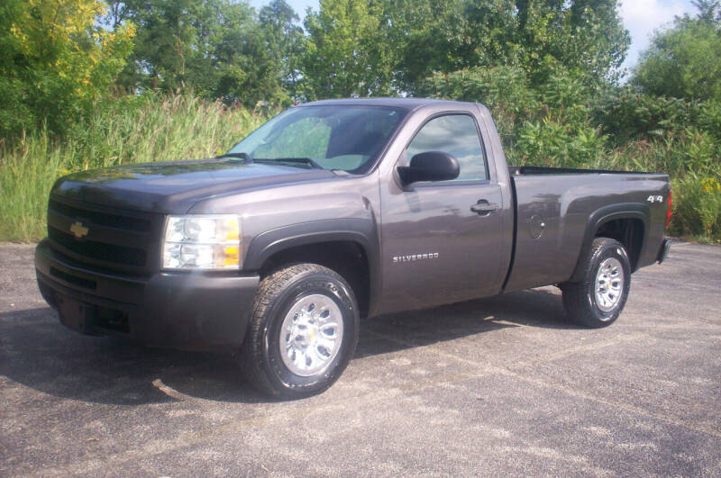 2010 Chevrolet Silverado 1500 for sale at Action Auto Wholesale - 30521 Euclid Ave. in Willowick OH