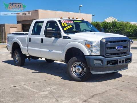 2015 Ford F-250 Super Duty for sale at GATOR'S IMPORT SUPERSTORE in Melbourne FL
