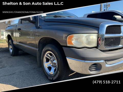2002 Dodge Ram Pickup 1500 for sale at Shelton & Son Auto Sales L.L.C in Dover AR