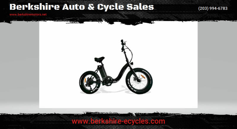 2021 Berkshire Bigfoot Folding Fat Tire Step for sale at Berkshire Auto & Cycle Sales in Sandy Hook CT