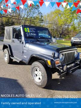 2002 Jeep Wrangler for sale at NICOLES AUTO SALES LLC in Cream Ridge NJ