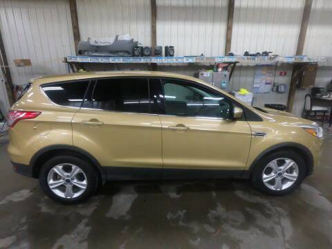 2014 Ford Escape for sale at Alpha Auto - Mitchell in Mitchel SD