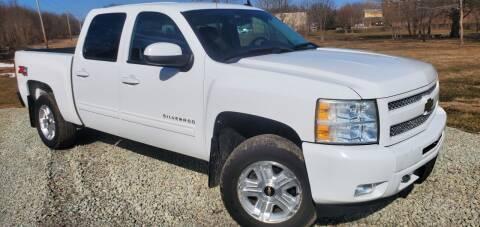 2011 Chevrolet Silverado 1500 for sale at Sinclair Auto Inc. in Pendleton IN