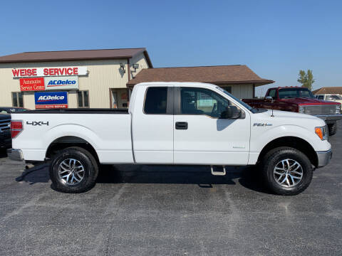 2013 Ford F-150 for sale at Pro Source Auto Sales in Otterbein IN