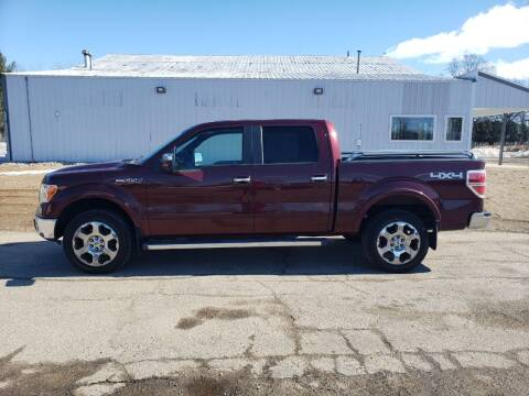 2010 Ford F-150 for sale at Steve Winnie Auto Sales in Edmore MI