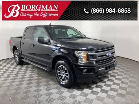 2019 Ford F-150 for sale at BORGMAN OF HOLLAND LLC in Holland MI