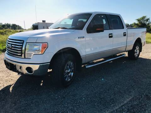 2010 Ford F-150 for sale at MINNESOTA CAR SALES in Starbuck MN