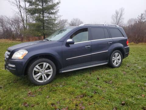 2010 Mercedes-Benz GL-Class for sale at Drive Motor Sales in Ionia MI