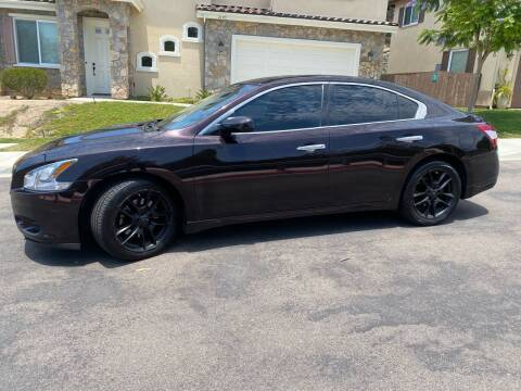 2010 Nissan Maxima for sale at CALIFORNIA AUTO GROUP in San Diego CA