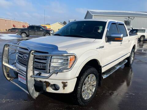 2010 Ford F-150 for sale at De Anda Auto Sales in South Sioux City NE