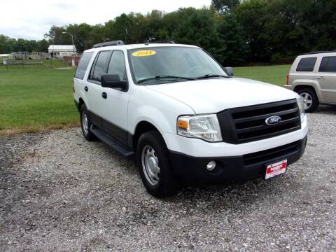 2014 Ford Expedition for sale at BABCOCK MOTORS INC in Orleans IN
