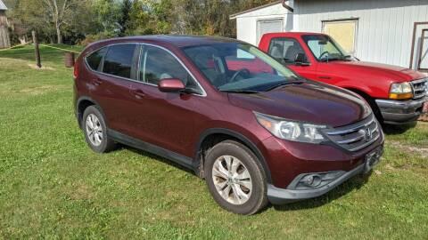 2013 Honda CR-V for sale at Kidron Kars INC in Orrville OH