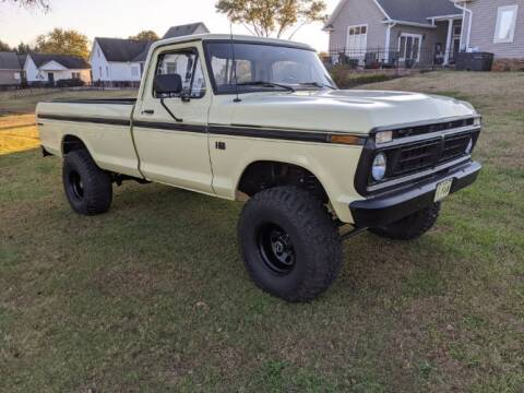 1976 Ford F-150 for sale at Classic Car Deals in Cadillac MI