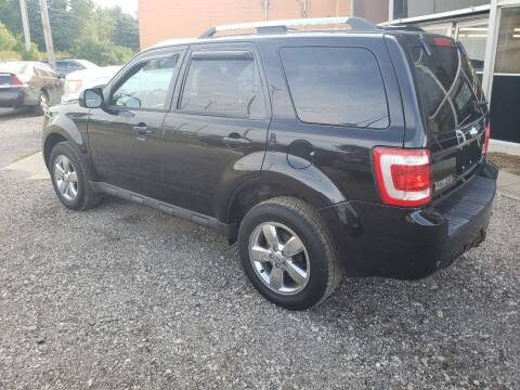 2009 Ford Escape for sale at Fansy Cars in Mount Morris MI