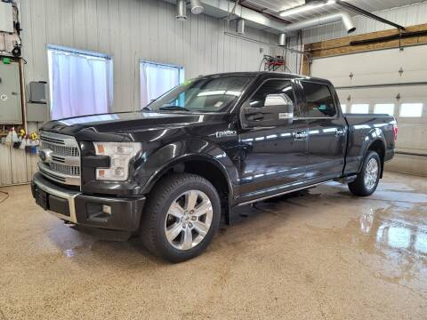 2015 Ford F-150 for sale at Sand's Auto Sales in Cambridge MN