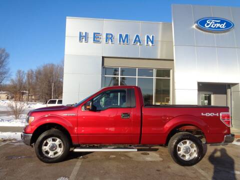 2014 Ford F-150 for sale at Herman Motors in Luverne MN