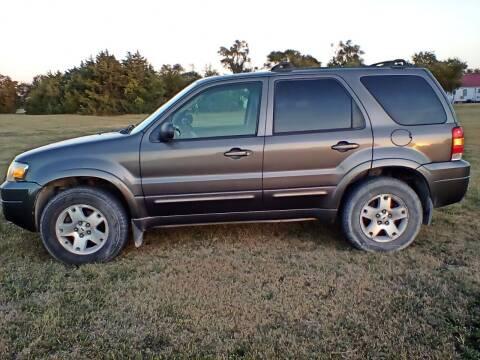 2006 Ford Escape for sale at BALLARD AUTOS & SAND TOYS in Stockton KS