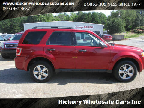 2010 Ford Escape for sale at Hickory Wholesale Cars Inc in Newton NC