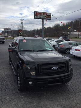 2013 Ford F-150 for sale at MARLAR AUTO MART SOUTH in Oneida TN