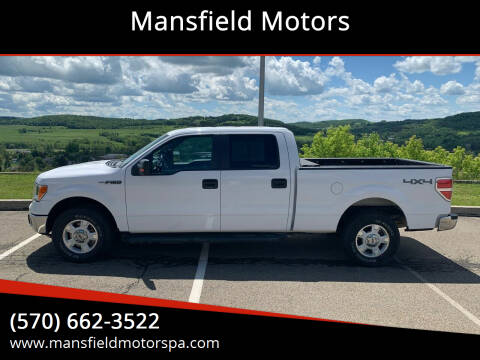 2014 Ford F-150 for sale at Mansfield Motors in Mansfield PA