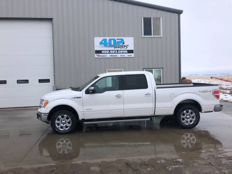 2014 Ford F-150 for sale at 402 Autos in Lindsay NE