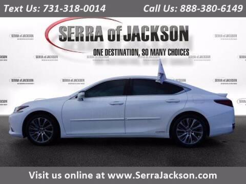 2019 Lexus ES 300h for sale at Serra Of Jackson in Jackson TN