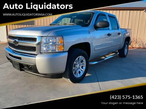2011 Chevrolet Silverado 1500 for sale at Auto Liquidators in Bluff City TN