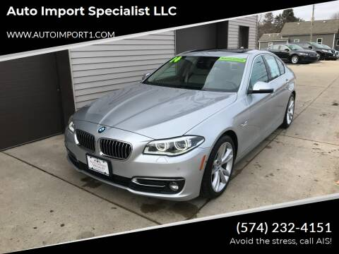 2014 BMW 5 Series for sale at Auto Import Specialist LLC in South Bend IN