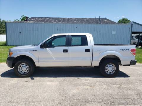 2012 Ford F-150 for sale at Steve Winnie Auto Sales in Edmore MI