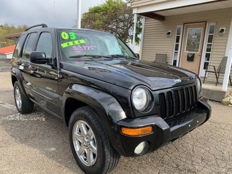 2003 Jeep Liberty for sale at G & G Auto Sales in Steubenville OH