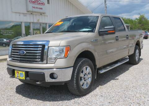 2010 Ford F-150 for sale at Low Cost Cars in Circleville OH