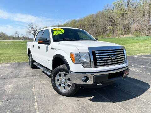 2011 Ford F-150 for sale at A & S Auto and Truck Sales in Platte City MO