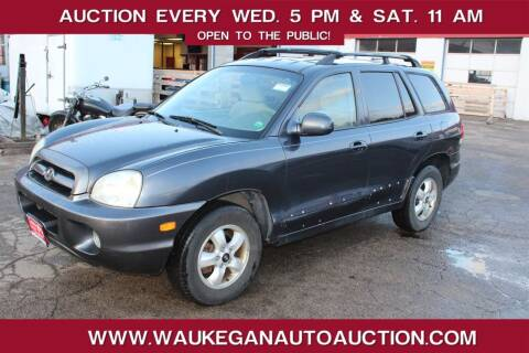 2005 Hyundai Santa Fe for sale at Waukegan Auto Auction in Waukegan IL