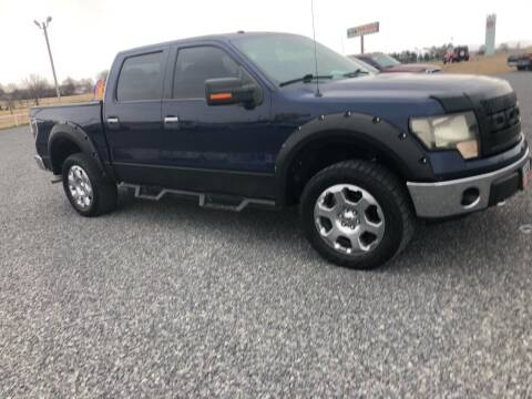 2010 Ford F-150 for sale at RAYMOND TAYLOR AUTO SALES in Fort Gibson OK