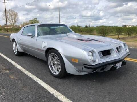 1975 Pontiac Firebird for sale at Classic Car Deals in Cadillac MI