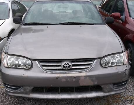 1995 Toyota Corolla for sale at Ody's Autos in Houston TX